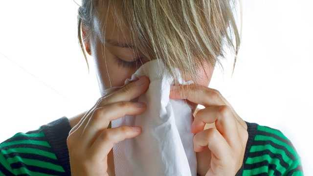 allergy sneeze cold