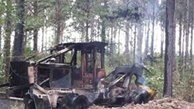 Lawrence County logging damage