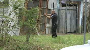 A Jackson officer had his gun trained on the dog in case it attacked.