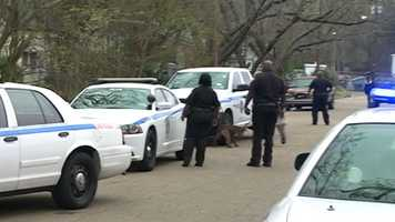 Officers line up on Vardaman Street as the officer brings the dog to an awaiting animal control truck.
