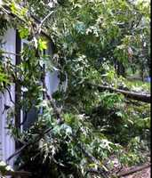 Debbie Milling Haynes says she had storm damage Monday at her home in Byram.