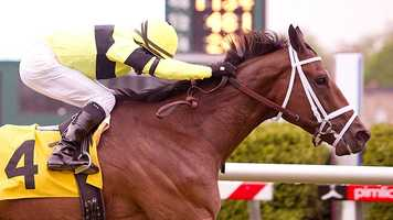 Hudson Steele wins Henry S. Clark Stakes | Jim McCue\Maryland Jockey Club