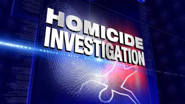 DO NOT USE Homicide investigation