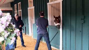 """Assistant trainer Jack Sisterson explains why, saying, """"You know, he was enjoying the track there at Churchill (Downs), and we took him a week before, and it's not going to hurt him being here for the two weeks."""" 