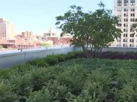 """""""We'll have gardens outside where the families and wait and fantastic views of the city from our all-private rooms. It should be a great experience for all moms,"""" Mercy CEO Tom Mullen said."""