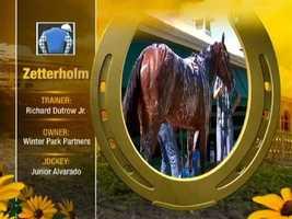 Zetterholm Post 4 (M-L Odds 20)
