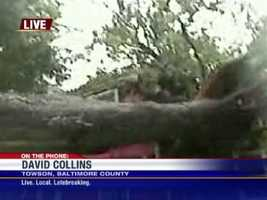 11 News reporter David Collins sends back Internet video from 628 Chestnut St. in Towson, where a huge tree crashed into a home.