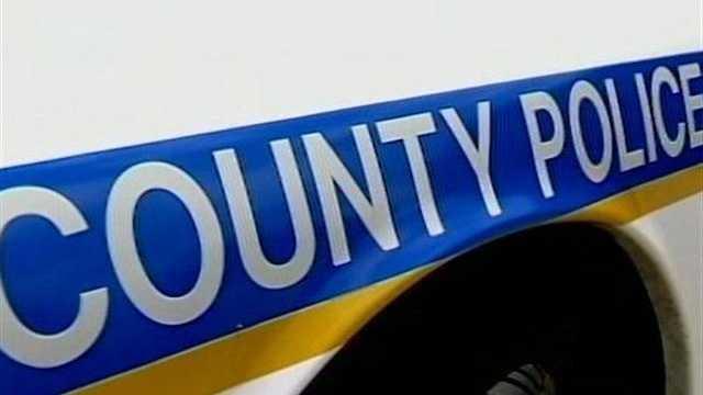 Baltimore County police car stripe