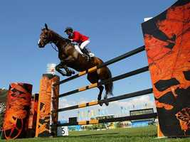 We tallied up the votes, and counted the most popular. Equestrian came in with one vote.