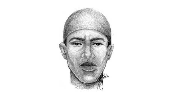 Composite sketch released in Lance Johnson's death