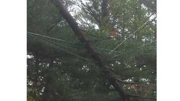 Power lines are down in Queen Anne's County.
