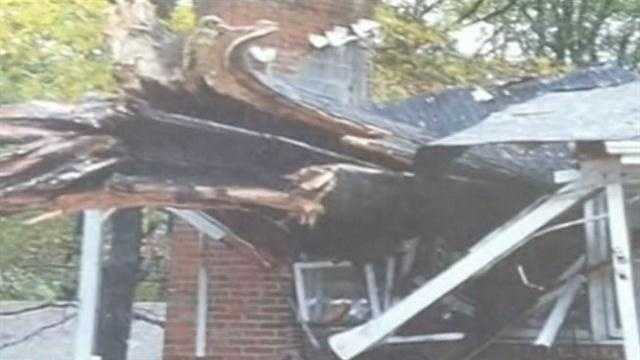 Tree Falls On House Kills Man In Anne Arundel County