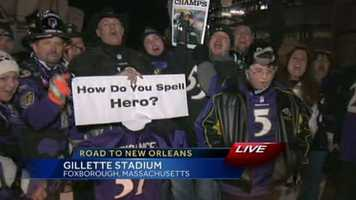 Fans at Gillette Stadium celebrate the Raven's win and their seat in the Super Bowl.