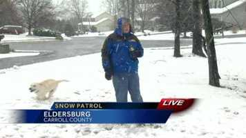 11 News reporter Rob Roblin has some fun with Charlie, a local Labrador in Eldersburg, who couldn't stop bolting around him during his liveshot.