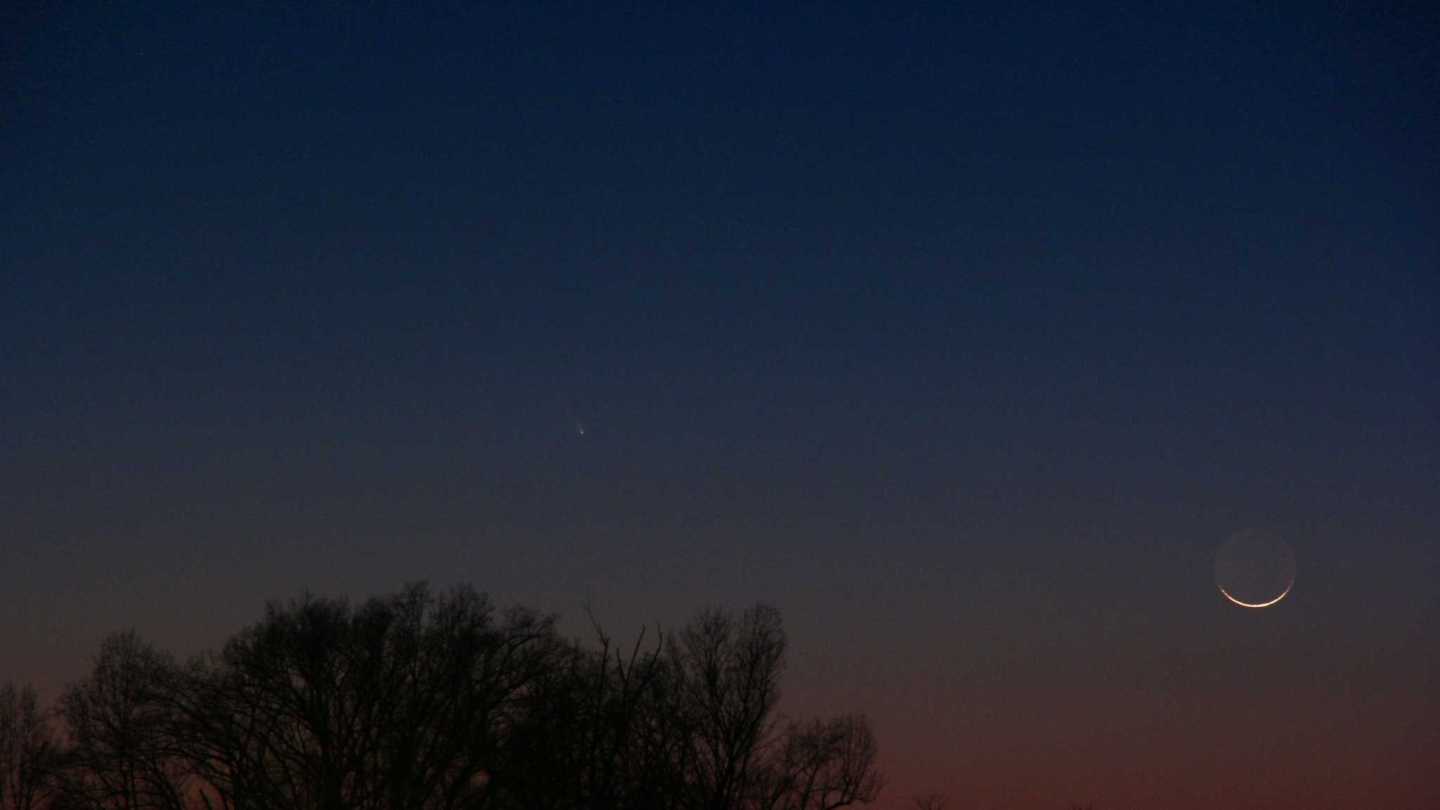 Pan-STARRS comet photo from viewer