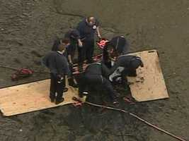 Anne Arundel County emergency crews pull a young man stuck in the mud.