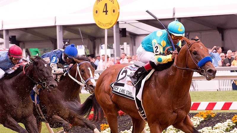 Zee Bros wins Chick Lang Stakes