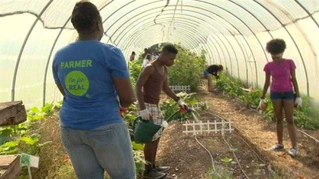 Baltimore students sow seeds for healthier lifestyle