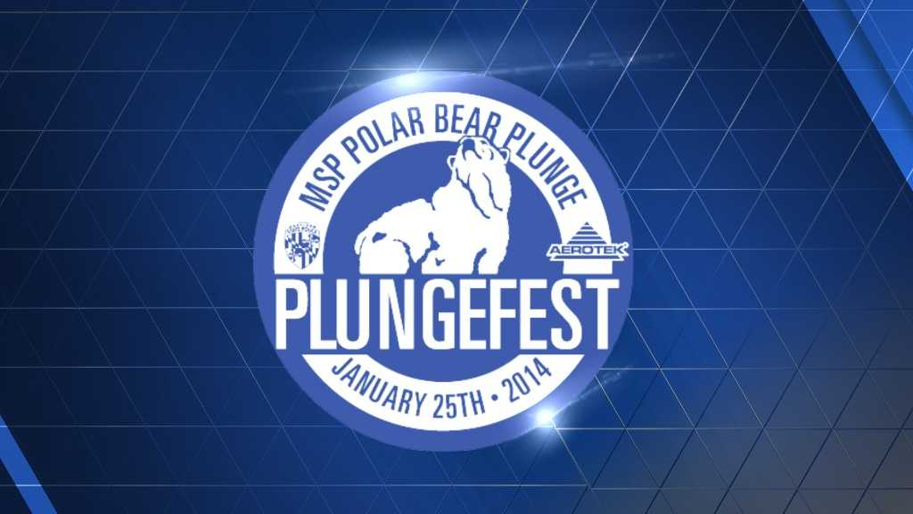 2014 plunge logo