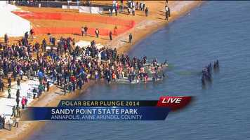 Hundreds of law enforcement officers take the plunge on Friday