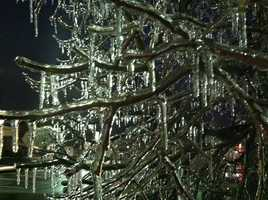 The latest storm to hit the region coats many parts of Maryland in a layer of ice.  Here, ice can be seen in Catonsville at 6:45 a.m.