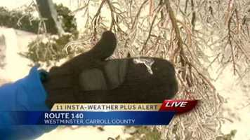11 News reporter Jennifer Franciotti shows off the thickness of the ice on the trees.