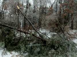 The ice knocks down trees and power lines along I-83 near Mount Carmel Road in northern Baltimore County.