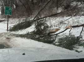 More downed trees along I-83.