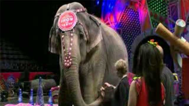 Ringling Bros Barnum and Bailey Circus
