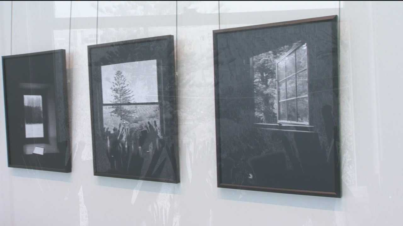'Light Touch' exhibit at BWI-Marshall features local artists
