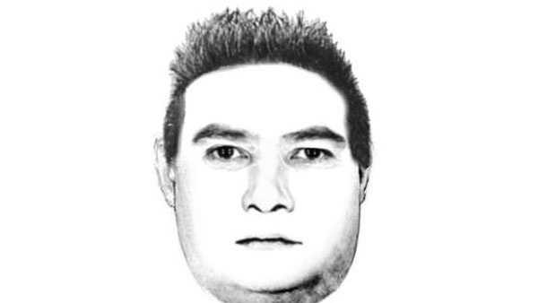 Police release sketch in Ferndale sex assault