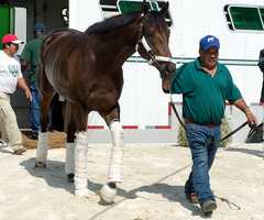 May 12:General a Rod arrives at Pimlico Race Course in Baltimore, Maryland