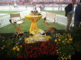 May 16:WBAL-TV Preakness set