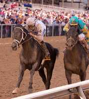 May 16:WinStar Farm's Revolutionary launches an extended and thrilling rally to register a narrow victory in Friday's $300,000 Pimlico Special (G3).