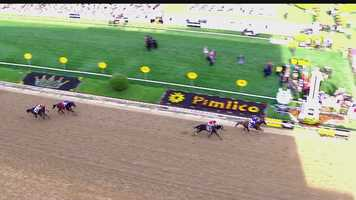May 17: California Chrome crosses the finish line at the 139th Preakness Stakes