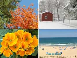 Sarah loves every season: Fall for the foliage, winter for playing in the snow, spring for flowers blooming and summer for vacations!