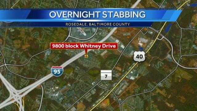 Rosedale stabbing