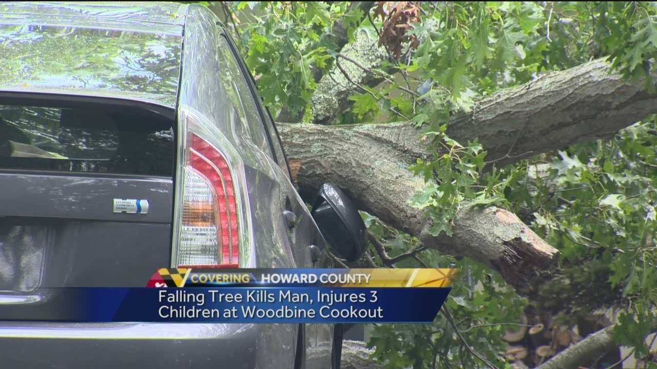 Tree falls, kills man in Howard County