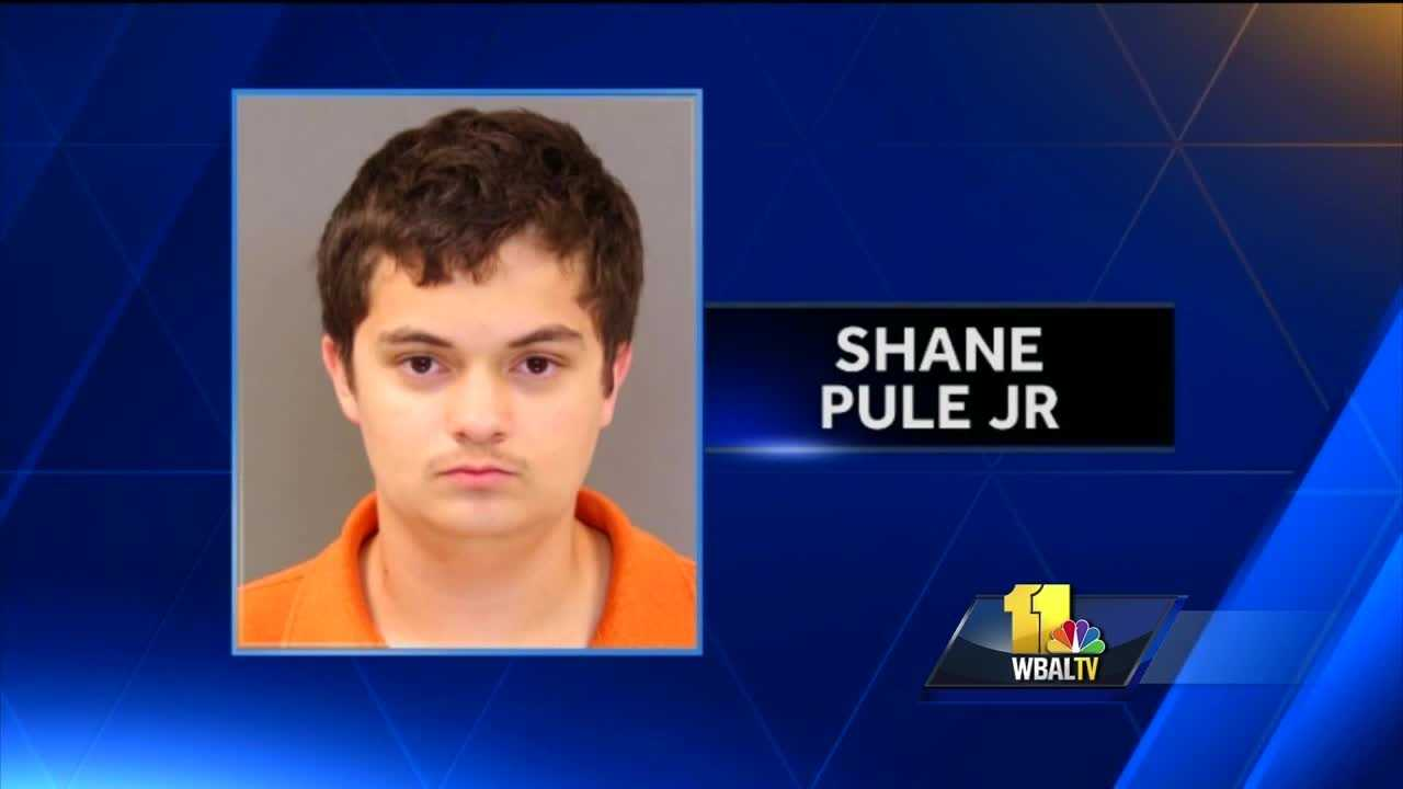 A Kenwood High School student has been charged as an adult after pointing a gun at a fellow student, Baltimore County police said.