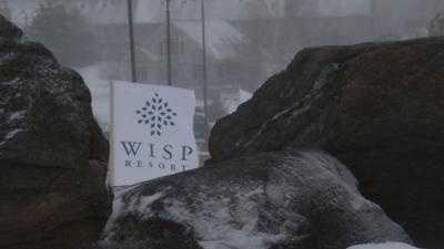 wisp1 - 6142080