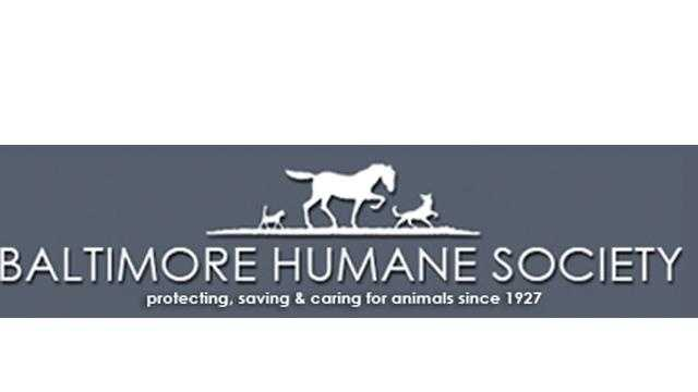 Baltimore Humane Society logo - 29439381