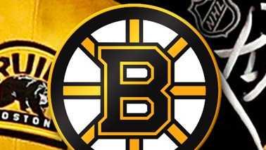 Bruins Small.jpg