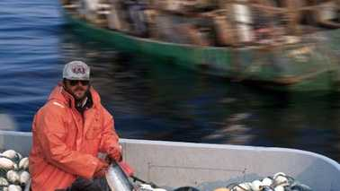 Fishing industry fishermen Small.jpg