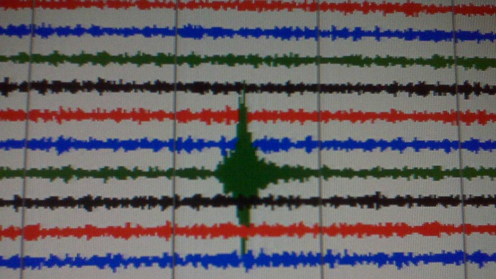 Seismograph activity 2 - 25961983