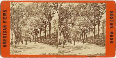 This late 1800's photo shows a path leading through the Common that runs parallel to Beacon Street.