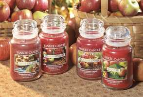 The Yankee Candle Company is the largest U.S. manufacturer of scented candles. The company was started in South Hadley in 1969 and now is located in South Deerfield.