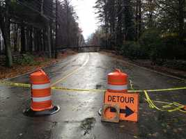 A detour on Farm Road in Dover where a tree came down to block the road.