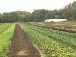 Great Barrington has farmers.