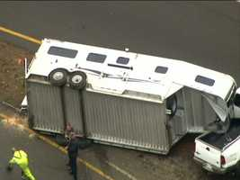 Police are at the scene of a crash involving a horse trailer on Interstate 495 in Wrentham.