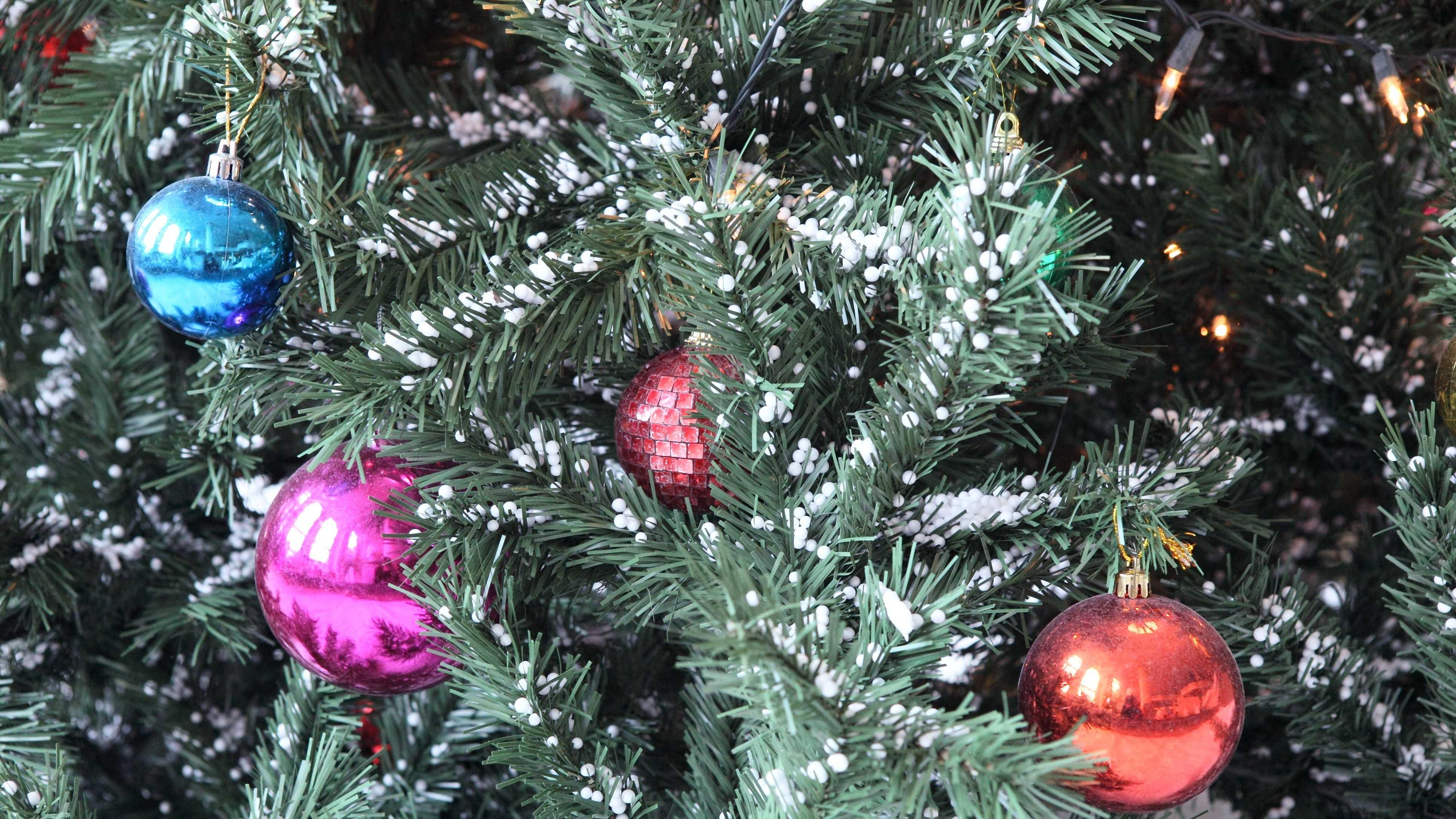 Christmas Tree good generic still